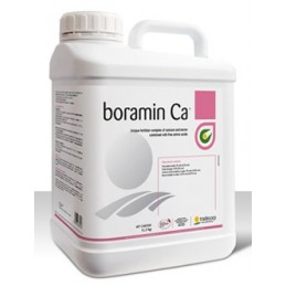 BORAMIN CA 20 LT