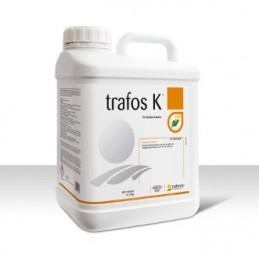 TRAFOS K