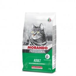 MORANDO CAT CROCCANTINI...