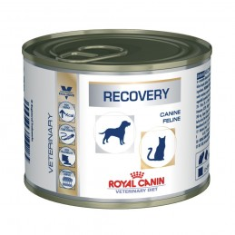 ROYAL CANE E GATTO RECOVERY...